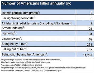 Number of Americans killed by displayed in a chart